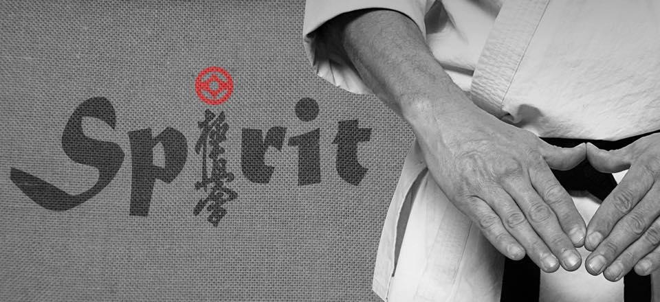 Kyokushin Spirit Karate Vereniging