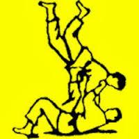 Judo club Goirle